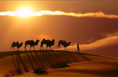 丝绸之路经典游:丝绸之路旅行体验之二